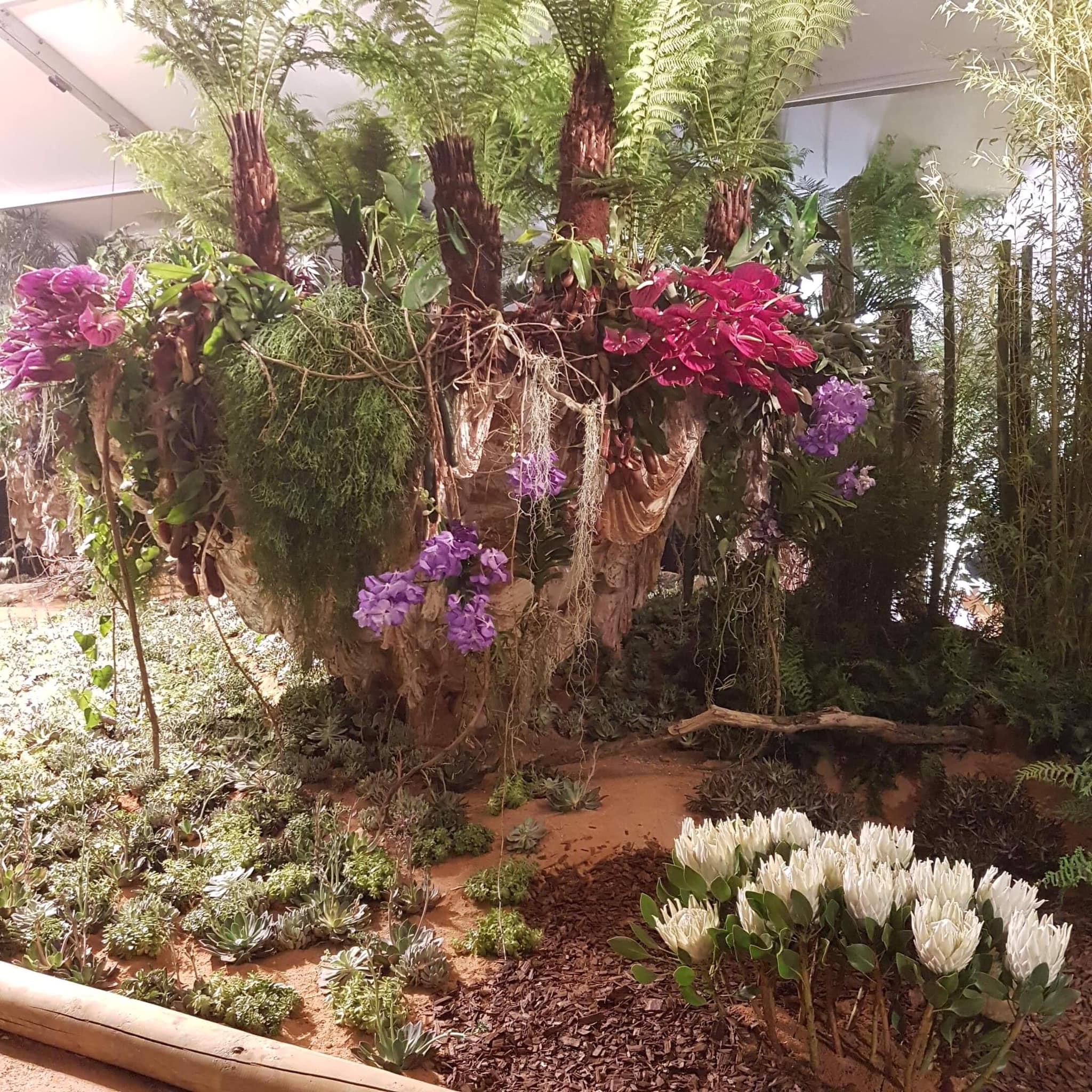 Cédric Desahyes d'Art et Végétal, aux Floralies de Sanary